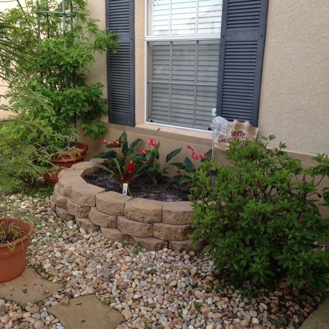 Como hacer que tu jard n sea la envidia de tu vecindad for Como arreglar un patio pequeno crear un jardin